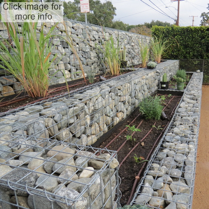 terraced gabion garden
